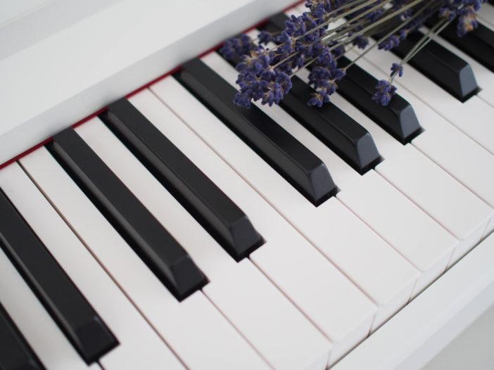 三木音楽教室